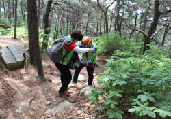 힐링+충전+행복=숲으로의 아름다운 여행