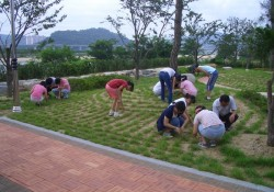 2005-7-18  학생자원봉사체험